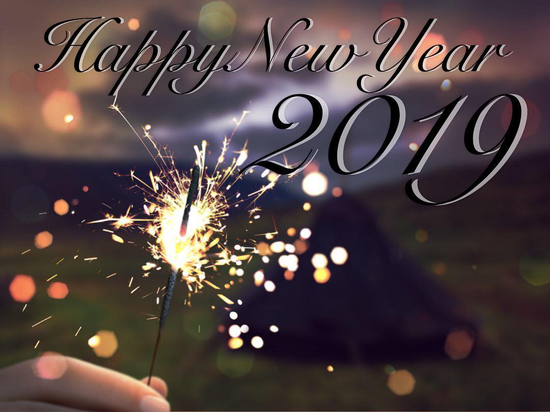 Happy New Year : Happy new year 2019 dpsg martin luther king
